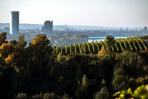 24 Stunden Pflege in Bonn